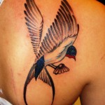 color bird with claws tattoo on shoulder