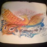 color phoenix back tattoo cover up