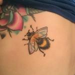 micro bee iridescent wings