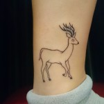 deer ankle outline