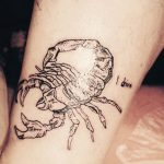 tattoo brooklyn scorpion tattoo linework on knee milene lichtwarck